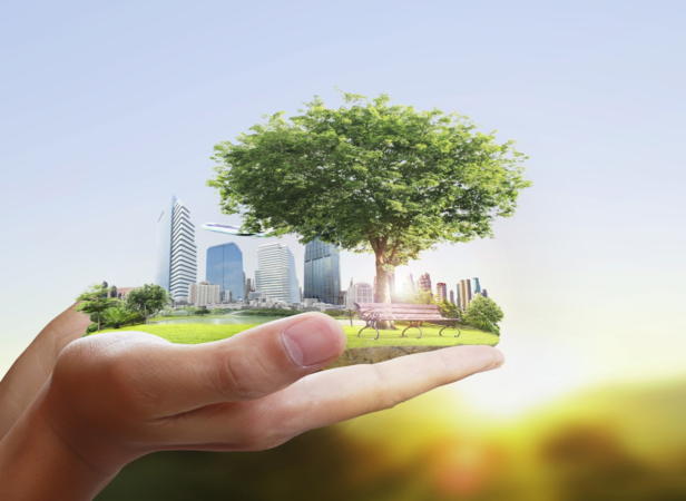 A Sustainability Scorecard can hold businesses accountable and drive innovation