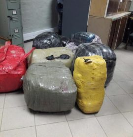 Truck loaded with dagga intercepted in Colesberg.