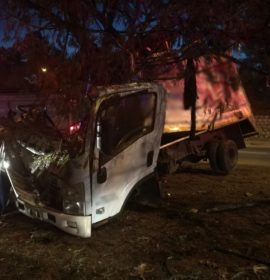 Brake failure blamed in fatal truck crash into tree on Marlboro Drive