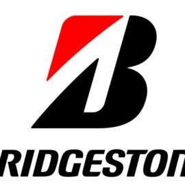 Bridgestone grows truck, bus footprint