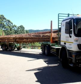 Timber24, Zange Industries, Merensky Driving Sustainable Shared Value for 162 Communities