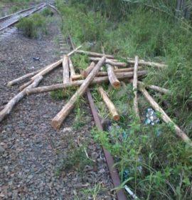 Suspects loot goods train near Verulam