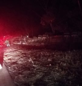 Two dead in South Coast truck crash