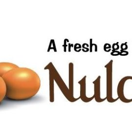 Imperial Logistics secures a long-term contract to distribute Nulaid eggs.