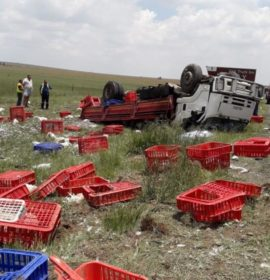 One killed in truck rollover on the N3 North of Villiers.