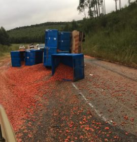 Truck rollover on the R528 George's Valley road in Limpopo