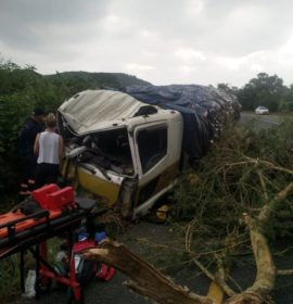 A truck  lost all breaks when coming down the hill and collided with a tree near Nelspruit