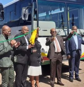 New buses unveiled in Limpopo