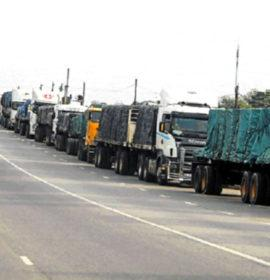 Truck Drivers not at Fault for Crisis at Beitbridge