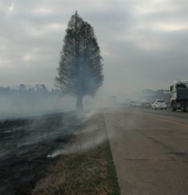 Stay Alert to the Challenges presented by Veld Fires
